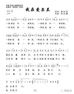 属于爱尔兰华人自己的专属歌曲出来了——《我在爱尔兰》
